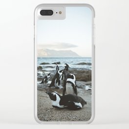 South African Penguins in Cape Town Clear iPhone Case