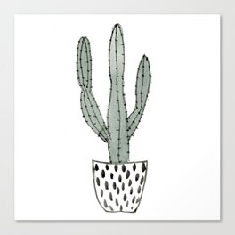 Potted cactus Canvas Print