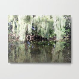 Moss in Reflection Metal Print