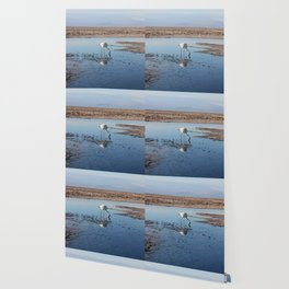 Salar de Atacama Wallpaper