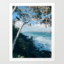 Canopy for a Coastline Art Print