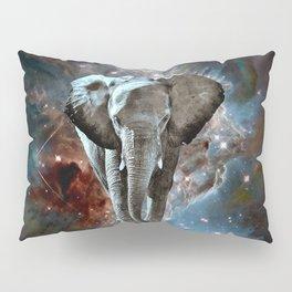 Where do Elephants Come From? Pillow Sham