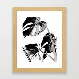 Black monstera leaves watercolor Framed Art Print