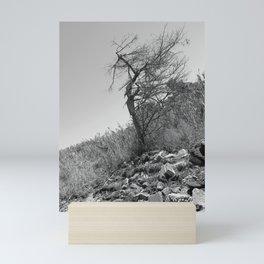 Beach Tree Mini Art Print