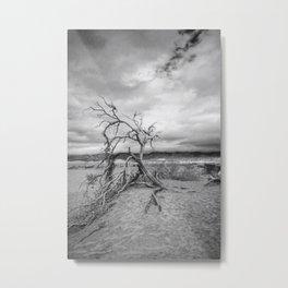 Death Valley I Metal Print