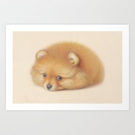 Ginger Pom puppy Art Print