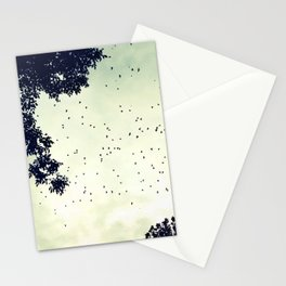 Flock of birds at sunset Stationery Cards