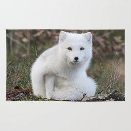 Polar Fox by Anne Elisabeth Rug