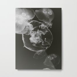 pb & j Metal Print