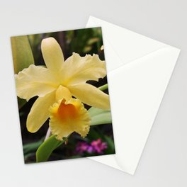 Bountiful Blessings Stationery Cards