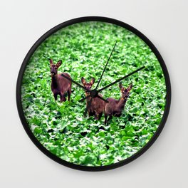 deers in the field. Wall Clock