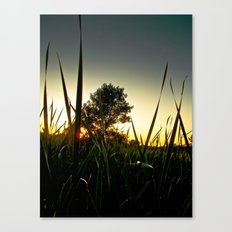 Slice of the Sky Canvas Print