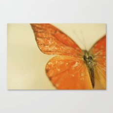 Love is like a Butterfly.... Canvas Print