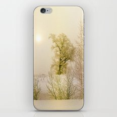 Golden Winter Forest iPhone & iPod Skin