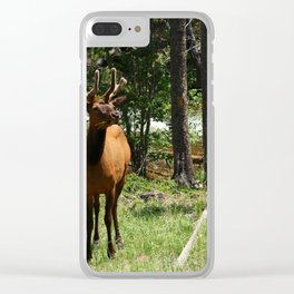 Rocky Mountain Wapiti Clear iPhone Case