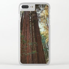 Redwood Trees Clear iPhone Case