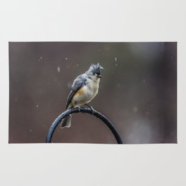 Tufted Titmouse shaking off the rain Rug