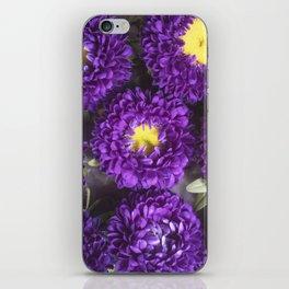 Bright Purple and Yellow Mum Flowers iPhone Skin