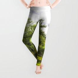 The Lily Pond Art Leggings