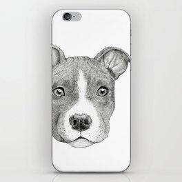 Staffordshire Terrier Dog iPhone Skin