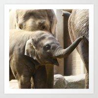 baby elephant Art Prints featuring Baby Elephant by Päivi Vikström