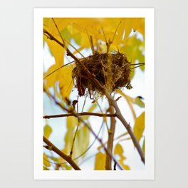 View From Below Art Print
