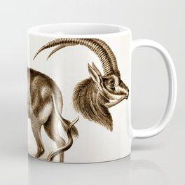 Ernst Haeckel Antilopina Antelope Coffee Mug