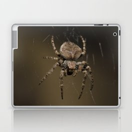 Spider Laptop & iPad Skin