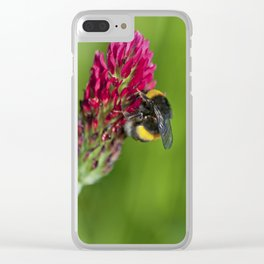 Bee feeding on a red flower Clear iPhone Case