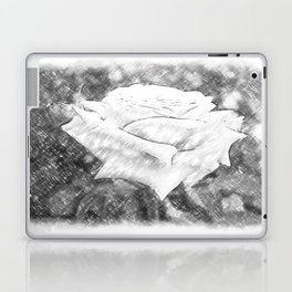 Pink Roses in Anzures 6 Charcoal Laptop & iPad Skin