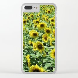 Sunflowers all day, everywhere, all around by Jéanpaul Ferro Clear iPhone Case