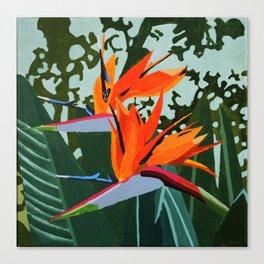 Strelitzia - Bird of Paradise Canvas Print