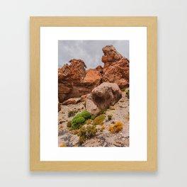 Yareta in Bolivia Framed Art Print