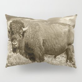 American Buffalo in Sepia Tone Pillow Sham