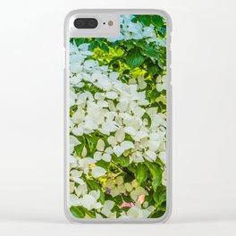 White Trillium grandiflorum Clear iPhone Case
