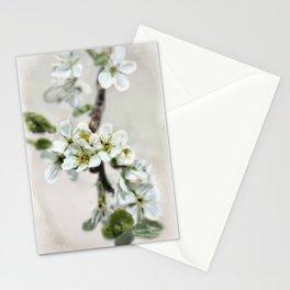 Scattered Kindness  Stationery Cards