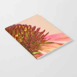 Cone flower colors Notebook