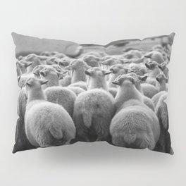Sheep (1) Pillow Sham