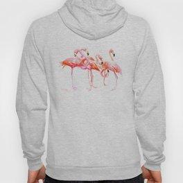 Flamingo design, flamingo art, flangos, pink flamingos bird design, Hoody