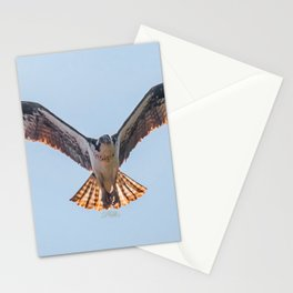 Nine Mile Osprey III Stationery Cards