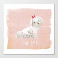 shih tzu Canvas Prints featuring Shih Tzu by 52 Dogs