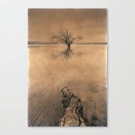 Roots And Trees. Hand Painted Photograph Canvas Print