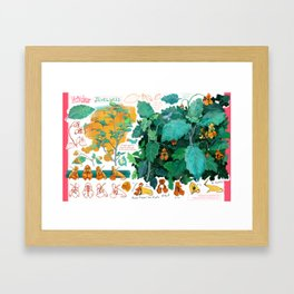 Jewelweed Framed Art Print