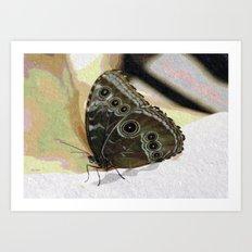 Butterfly Oil Pastel Art Print