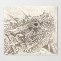 The Horned Lizard. Canvas Print