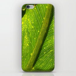 Spotted Leaf iPhone Skin