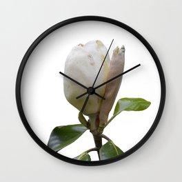 magnolia blooms Wall Clock