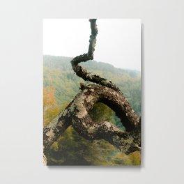 Wild Branch in August Metal Print