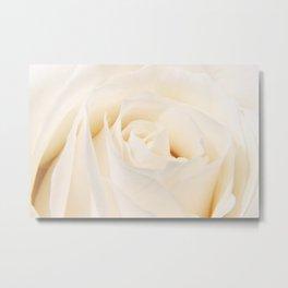 White Winterrose - Rose- Roses Metal Print