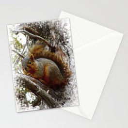 Jeronimo Rubio Photography | Peanut the Squirrel | I See You Stationery Cards